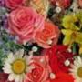 Прикольная картинка для аватарки из категории Цветы #680