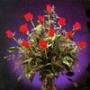 Крута автрака из категории Квіти #683