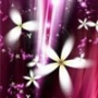 Красивая автрака из категории Цветы #763