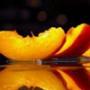 Безкоштовна ава из категории Квіти #818