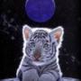 Безкоштовна картинка для аватарки из категории Тварини #1668