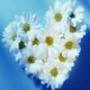 Красивая ава из категории Любовь #2466