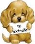 Безкоштовна ава из категории Собаки #3181