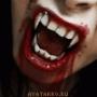 Прикольная автрака из категории Вампиры #3307