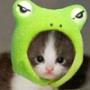 Оригинальная картинка для аватарки из категории Коты и кошки #3435