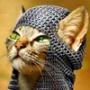 Красивая картинка для аватарки из категории Коты и кошки #3471