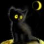 Прикольная автрака из категории Коты и кошки #3503