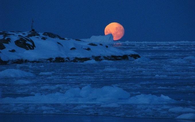 Між Антарктидою іДулібами: 5книжок про