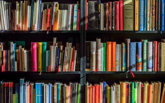 Етюди з натури – 7 книг Форуму видавців, які заслуговують на увагу
