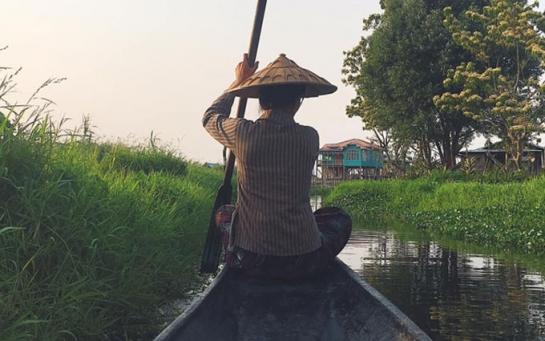 Бирманцы выращивают помидоры прямо в воде