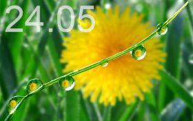 Прогноз погоди в Україні на 24 травня