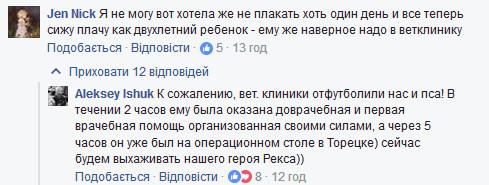 Случай с собакой, которая защитила бойцов АТО от обстрела на Донбассе, взбудоражил сеть (2)