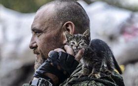 Коты в зоне АТО: появилась трогательная подборка фото за 2016 год