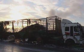 Атака на гумконвой в Сирии: появились новые подробности и циничное заявление России