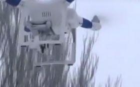 Беспилотник на Донбассе заснял отряд боевиков-диверсантов: опубликовано видео