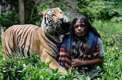 Неймовірна історія дружби тигра і людини (13 фото) (5)