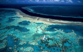Ученые заявили, что спасти Большой Барьерный риф не получится