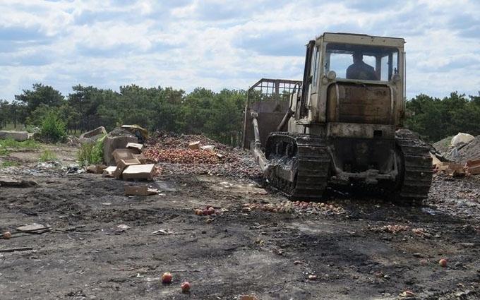 У Росії шокували обсягами знищених продуктів