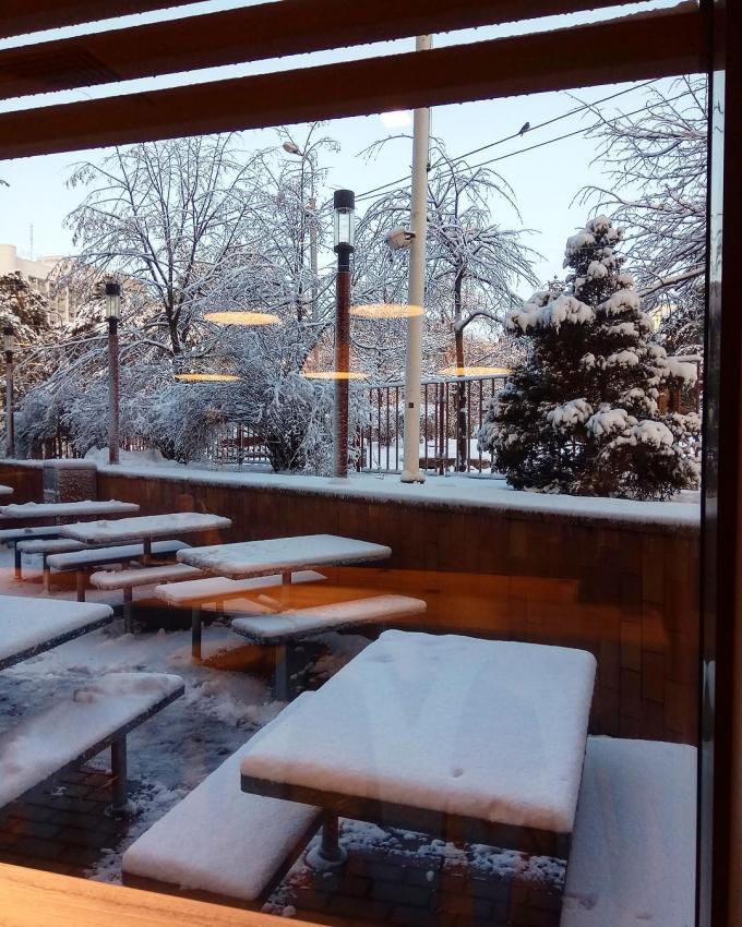Киев засыпало снегом: пользователи сети публикуют яркие фото (3)