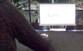"Дизайнер створила ""розумну"" сенсорну тканину: з'явилося відео"
