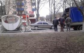 В Мариуполе лошадь везла карету с молодоженами и умерла: опубликованы фото