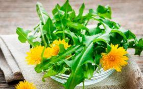 ТОП-9 растений, которые очистят ваш организм от токсинов