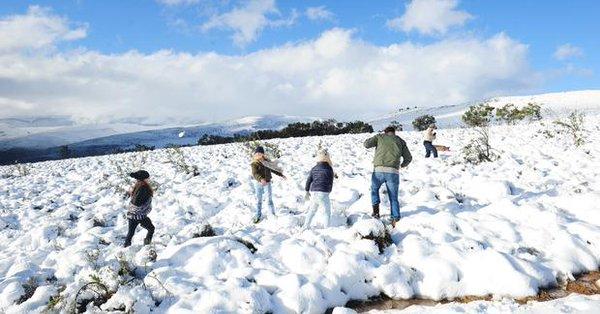 Зима посреди лета: в сети появились зрелищные фото и видео засыпанной снегом Африки (1)