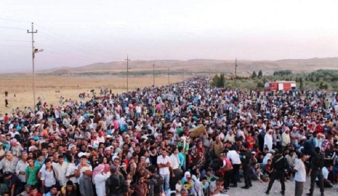 Австрия официально ввела лимит на прием беженцев