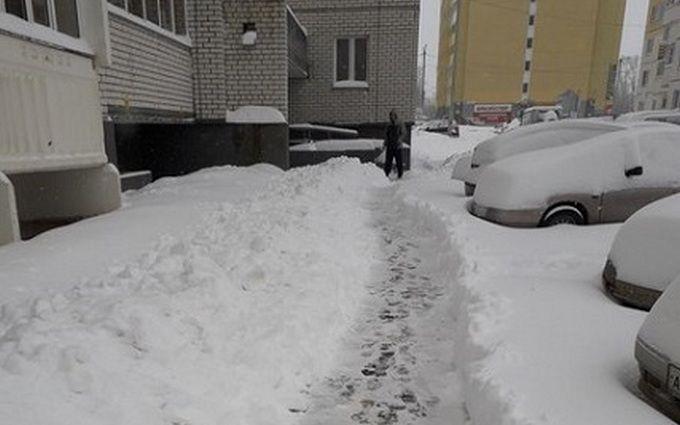Россию накрыл апрельский снегопад: опубликованы зрелищные фото и видео