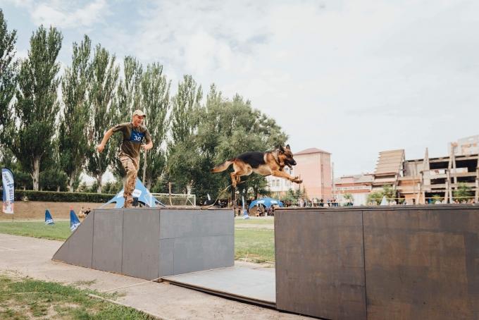 Чотирилапі офіцери: службові собаки з усієї України з'їхалися до Дніпра (1)