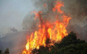 Смертельні пожежі у Греції: опубліковані шокуючі відео