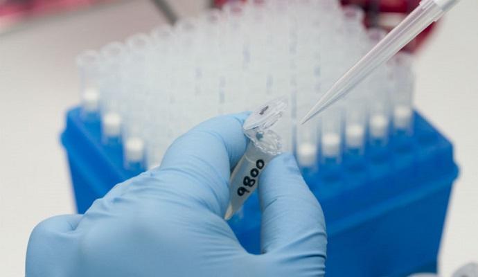 У двухдневных младенцев в Бразилии нашли вирус Зика