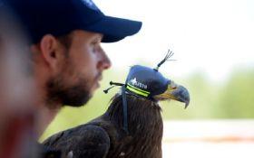 Орел будет охранять саммит НАТО в Брюсселе от несанкционированных беспилотников