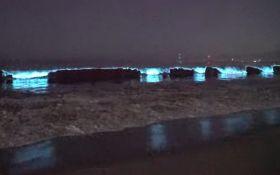 Захоплююче видовище - відео світіння океану зачарували весь світ