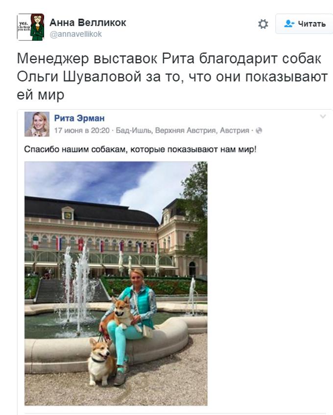 Соцмережі киплять через собачий скандал з дружиною міністра Путіна (1)