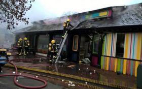 Мощный пожар в зоопарке Лондона: появились подробности и фото