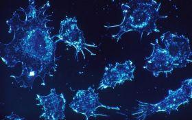 Наконец-то найден способ очистки крови от раковых клеток