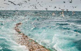 Два дня праздника рыбы и морепродуктов - фестиваль «Еда моря»