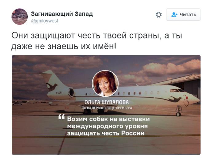 Соцмережі киплять через собачий скандал з дружиною міністра Путіна (2)