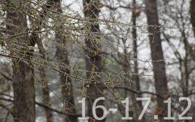 Прогноз погоди на вихідні дні в Україні - 16-17 грудня