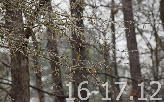 Прогноз погоды на выходные дни в Украине - 16-17 декабря
