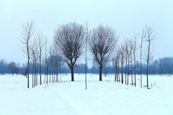 Прогноз погоди в Україні на п'ятницю - 07 грудня
