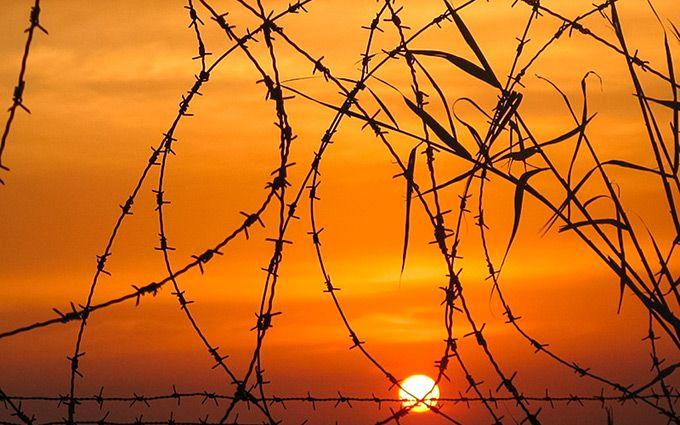 Впроцессе бунта вбразильской тюрьме погибли более 50-ти человек