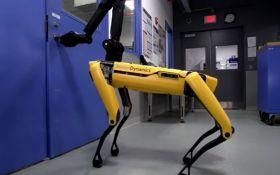 В Boston Dynamics поиздевались над робособакой: опубликовано видео