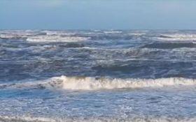 """В Германии на берег выбросило тысячи """"киндер-сюрпризов"""": появились фото и видео"""