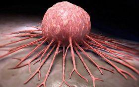 Назван лучший способ профилактики рака