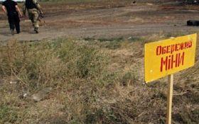 Германия выделила еще 500 тис. евро на информирование об опасности мин в зоне АТО