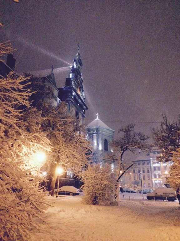 Львов засыпало снегом: в сети публикуют зрелищные фото (3)