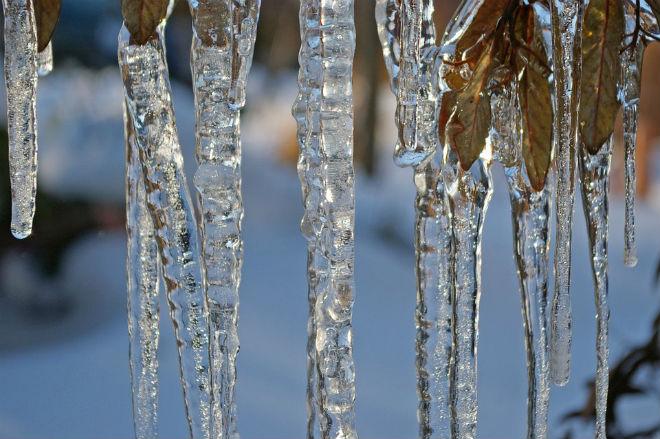 Погода на завтра, 14 січня