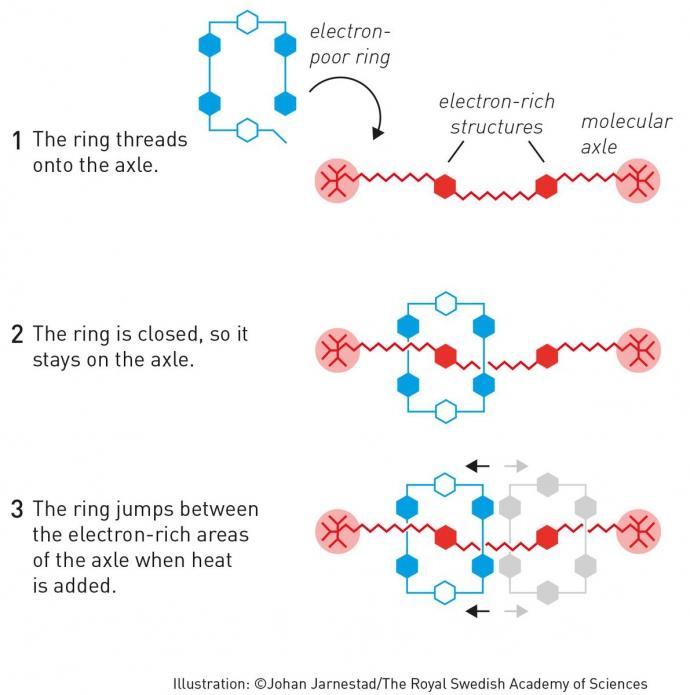 Нобелівську премію з хімії дали за дивовижні молекули: з'явилися подробиці (1)
